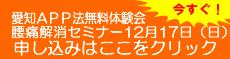 aichisemi2.jpg