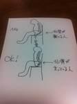 坐骨と仙骨